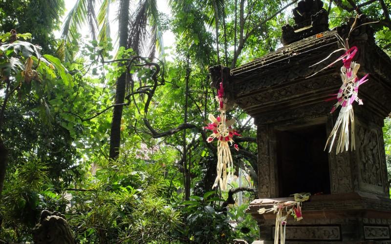 In Bali? Naar Ubud!