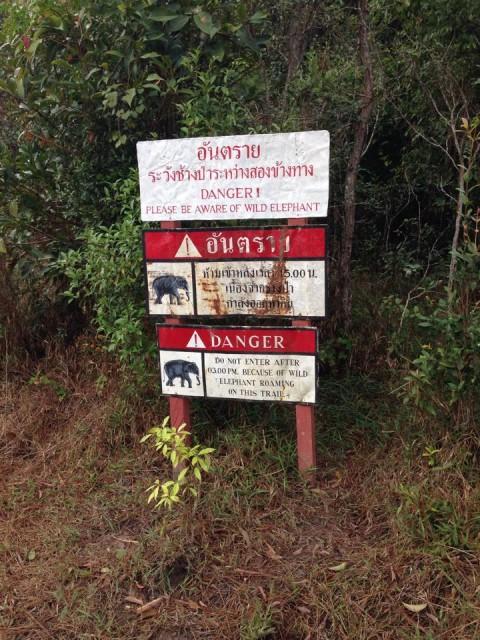 Phu Kradueng - Thailand